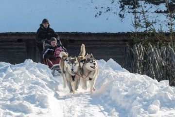 Prangli-Travel.-Riding-is-possible-by-sled-or-kick-sled
