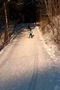 H. Hirvesoo Skiing