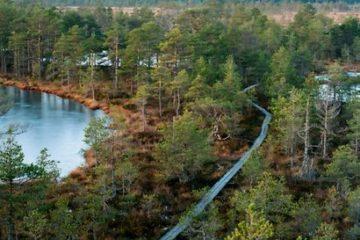 Bog-shoe hiking in Estonia. Prangli Travel