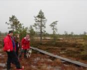 bog-shoe hike in a bog