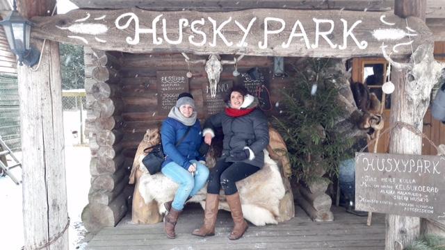 Husky Park visit with Prangli Travel