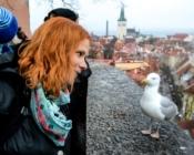©J. Leppmets - Tallinn Old Town Walking Tour