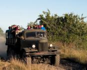 ©Sunlines. Naissaare ekskursioon toimub kastiautos