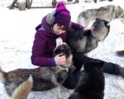 Huskyd armastavad kõiki