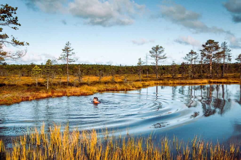 Swimming in a bog