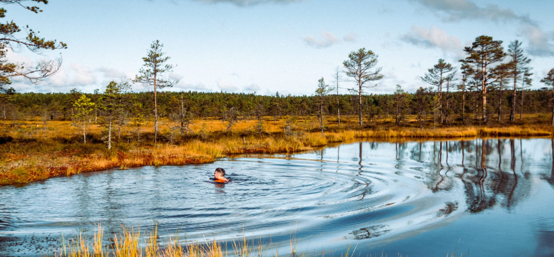 Swimming in a bog